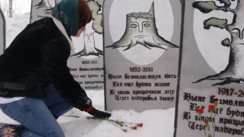 """""""Зеленое кладбище"""" - акция против вырубки деревьев в Екатеринбурге"""